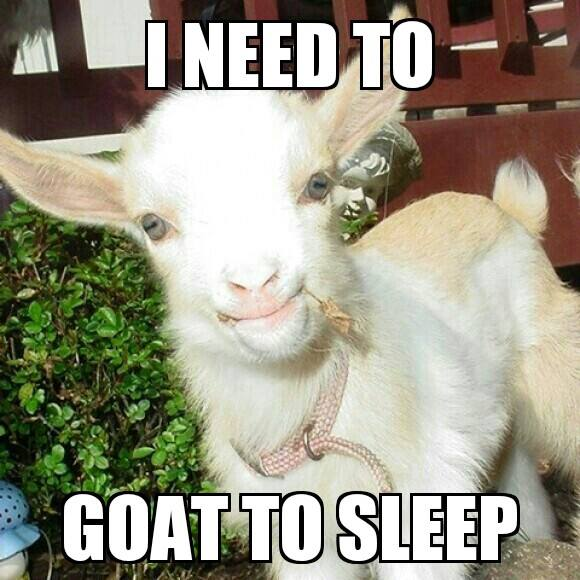 Goat Meme - Goat to Sleep