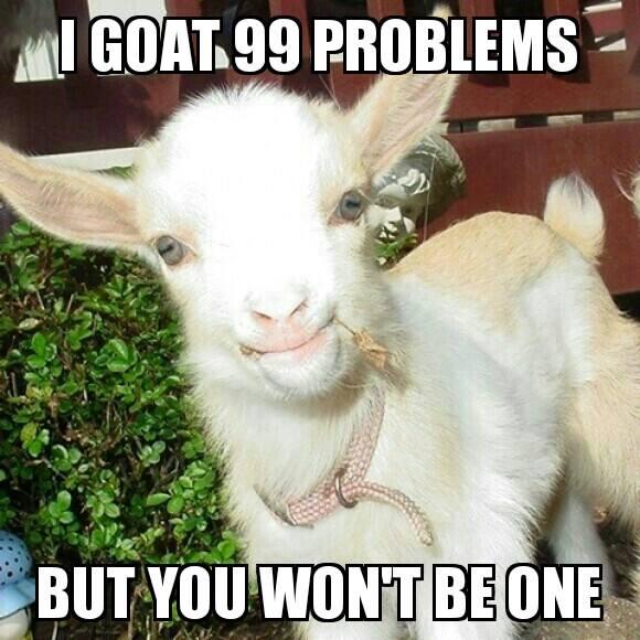 I goat 99 problems...